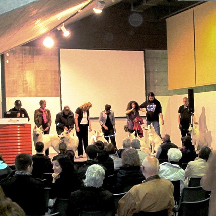 Foto: Edi Lauber (ganz links) leitet die Rassepräsentation