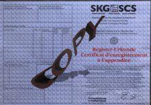 Ansicht einer SKG/FCI Ahnentafel