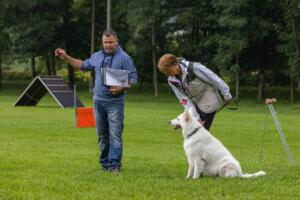 comp Sporthunde Weisser Schäfer 2021-005