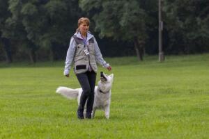 comp Sporthunde Weisser Schäfer 2021-009