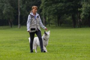comp Sporthunde Weisser Schäfer 2021-010