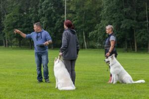 comp Sporthunde Weisser Schäfer 2021-017