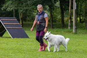 comp Sporthunde Weisser Schäfer 2021-025