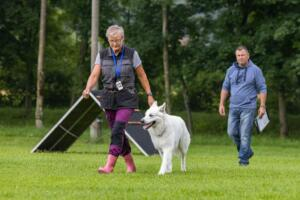 comp Sporthunde Weisser Schäfer 2021-026