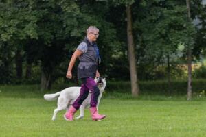 comp Sporthunde Weisser Schäfer 2021-039
