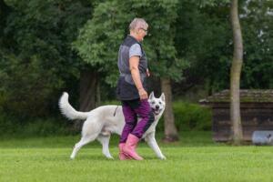 comp Sporthunde Weisser Schäfer 2021-040